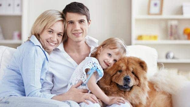 Wills & Trusts dog-young-family Direct Wills Harefield